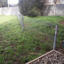 Galvanized Steel Fence & Gate Melba Belconnen Area Preview