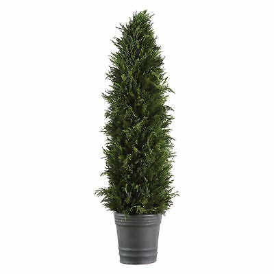 Tall Preserved Cypress Evergreen Topiary Tree | Permanent Greenery Cone -