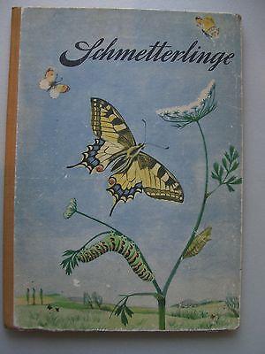 Schmetterlinge Vom Werden und Wachsen eines Schwalbenschwanzes 1. Auflage 1953