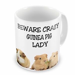 Beware Crazy Guinea Pig Lady Funny Novelty Gift Mug