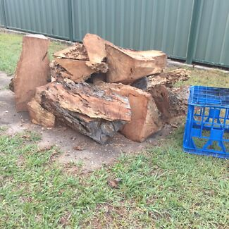 Firewood  Mango Hill Pine Rivers Area Preview