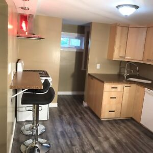 All inclusive one bedroom apartment in Port Elgin