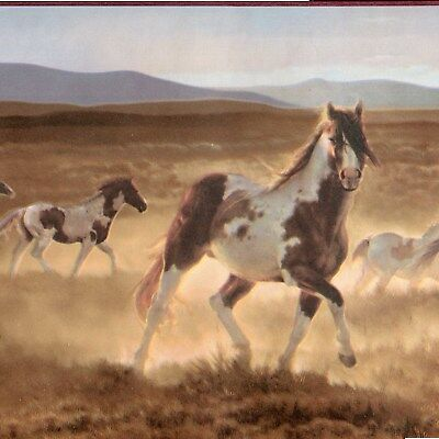 Horse Wallpaper Border - Wild Paint Horse Wallpaper Border - Western Plains - Brewster Borders - A500