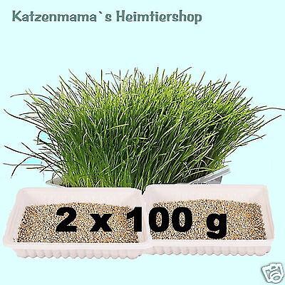 2 x Katzengras à 100 g (200 g) / 100 g 1,99 € Grassaat zum Selbstziehen