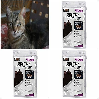 SENTRY Fiproguard CATS Flea and Tick Treatment Control Medicine Topical 6 count