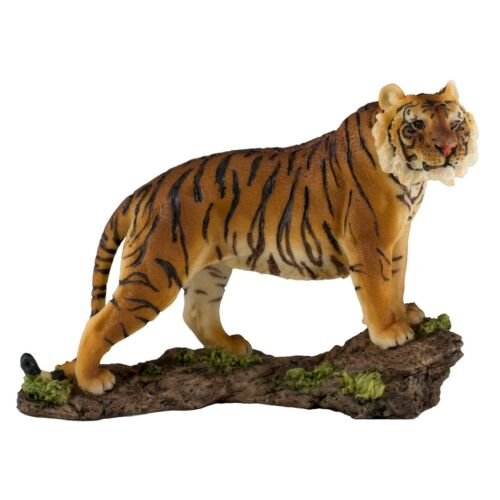 "Yellow Bengal Tiger Figurine Statue 7"" Long Detailed Resin New In Box!"