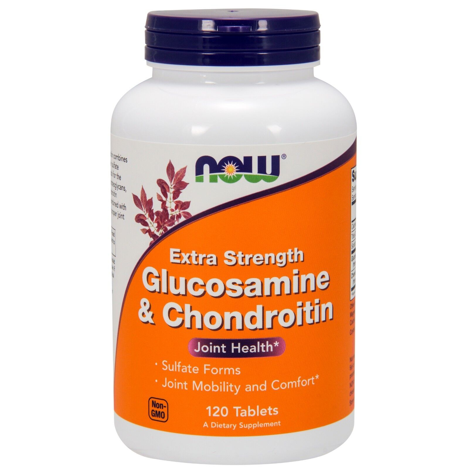 Now - Glucusamine & Chond 2X 750/600Mg 120 Tabs