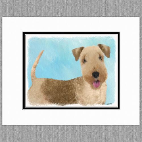 Lakeland Terrier Dog Original Art Print 8x10 Matted to 11x14