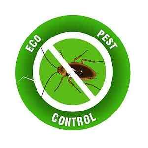 Pest/Termite Master Campsie Canterbury Area Preview