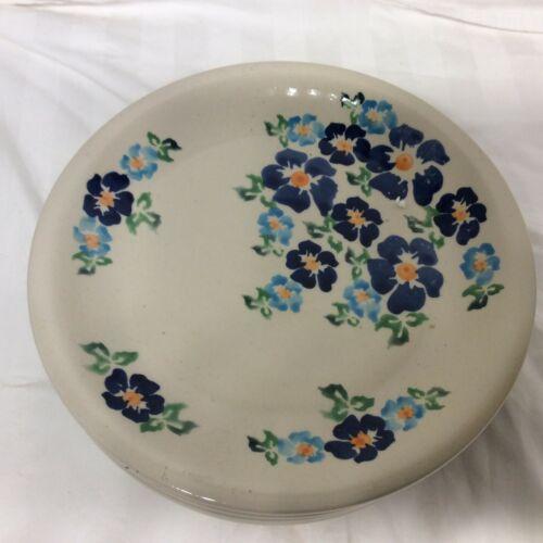 Boleslawiec  Handmade Polish  Pottery, 6 dinner  plates, rare pattern