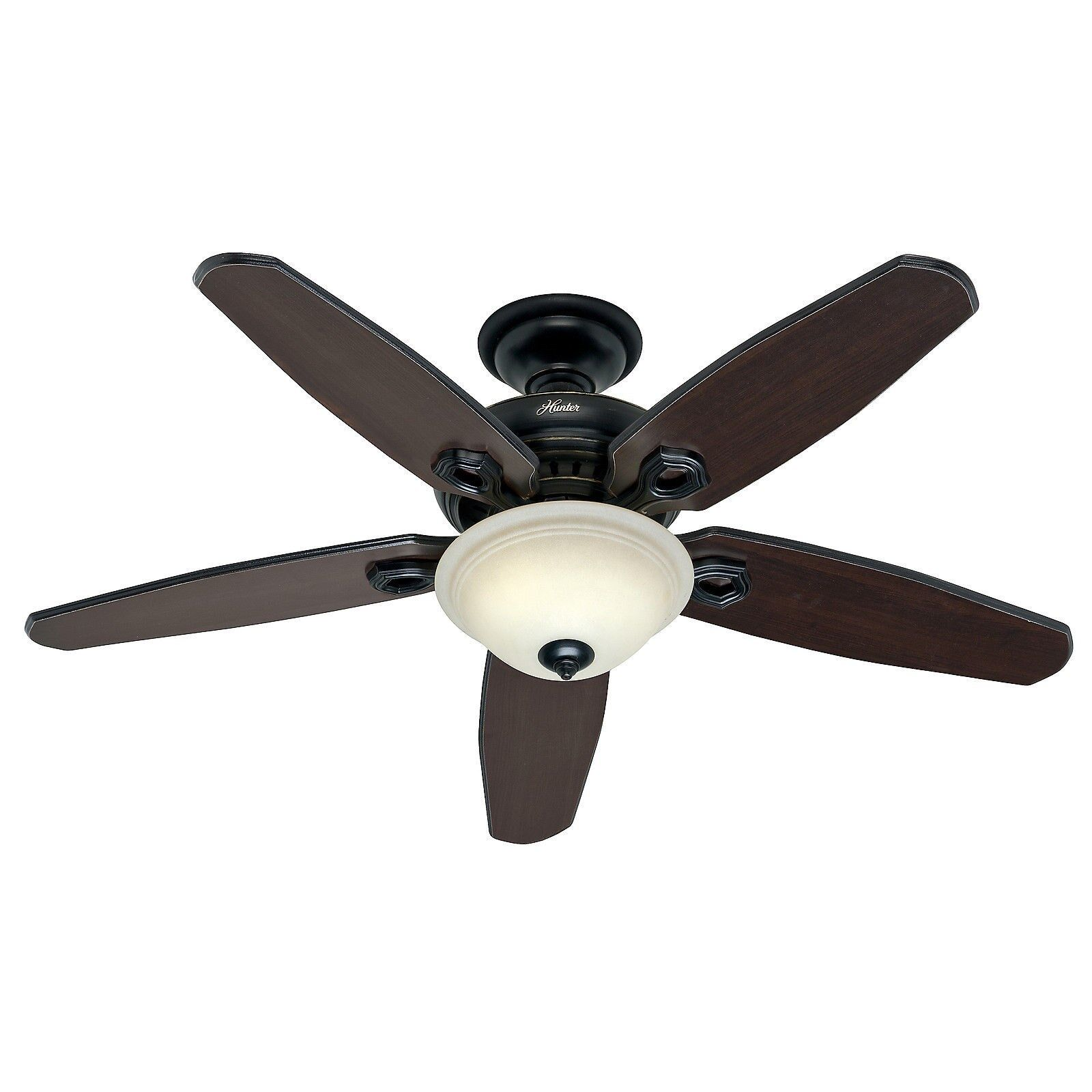 Control Ceiling Fan : Hunter in basque black ceiling fan with light remote