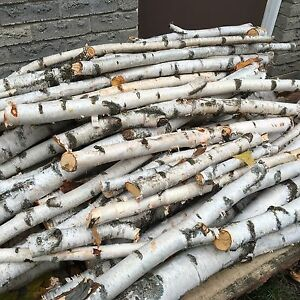 Small, medium and large birch logs / branches for sale Kitchener / Waterloo Kitchener Area image 3