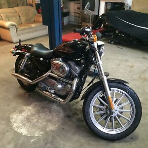 883 Harley Davidson sportster