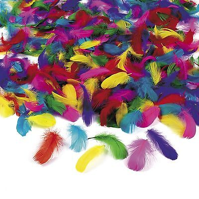 600 pc. Wholesale Lot Bulk Feathers Assorted Colors Art Crafts Kids Party Game - Bulk Feathers