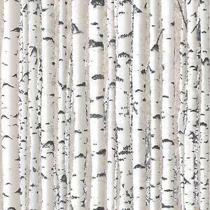Argento betulla rami bianco alberi carta da parati foresta for Carta da parati alberi stilizzati