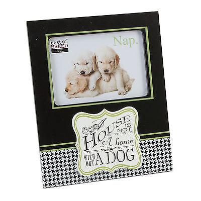 Best of Breeds Dog 4