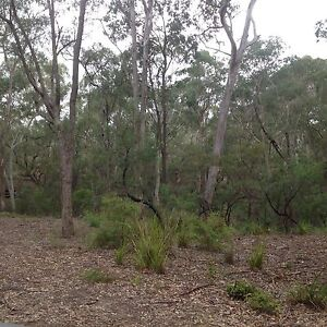 Land fill wanted East Kurrajong Hawkesbury Area Preview
