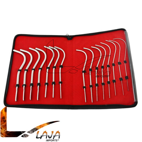 15 Pieces Guyon Urinary Instruments Kit Urethral Bougies Gynecology DS-1346