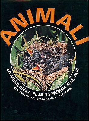 AA. VV. ANIMALI LA FAUNA DALLA PIANURA PADANA ALLE ALPI GRIBAUDO 1977 I° EDIZ.