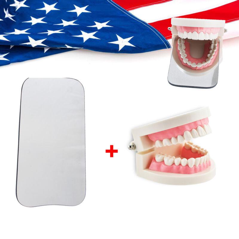 Dental Intraoral Orthodontic 2sided Photographic Glass Mirror + Teeth Model FDA