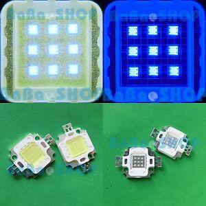 5x-10W-Cold-White-20000K-5x-10W-Royal-Blue-455nm-Power-LED-Light-Lamp-Aquarium