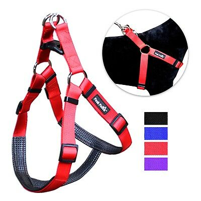 No Pull Padded Comfort Nylon Dog Walking Harness for Small Medium and Large - Padded Nylon Harness