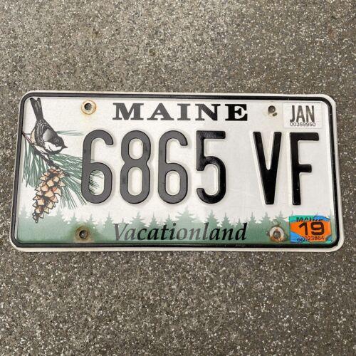 Original US Auto Kennzeichen Nummernschild USA MAINE 🇺🇸 Vacationland