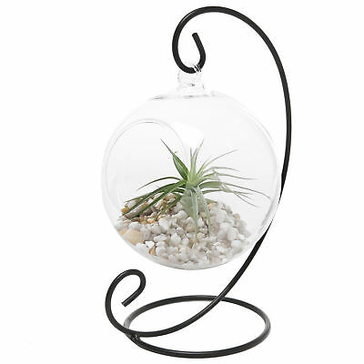 Clear Glass Hanging Planter Terrarium Globe W Metal Stand