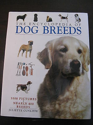 The Encyclopedia Of Dog Breeds   Juliette Cunliffe   384 Pages Softcover