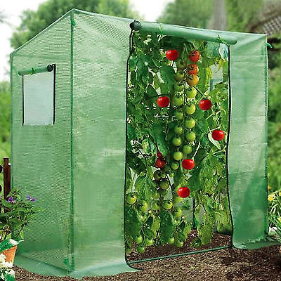Strong Camel 7' x3' x6' Tomato Walking-in Greenhouse Replacement Cover ONLY