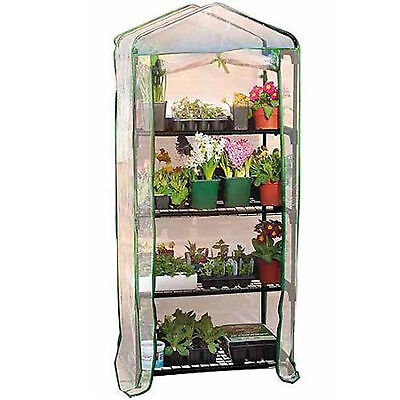 GARDEN 4 TIER GREENHOUSE COLD FRAME WITH SHELVING & REINFORCED COVER NEW
