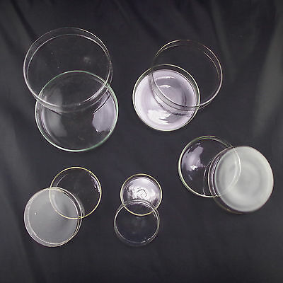 Petri Dishes With Lids Clear Glass A Set Of 607590100120mm