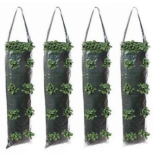 4 x Silverline Hanging Flower Bags Tube Tubes Flowers Strawberry's Sacks  22A