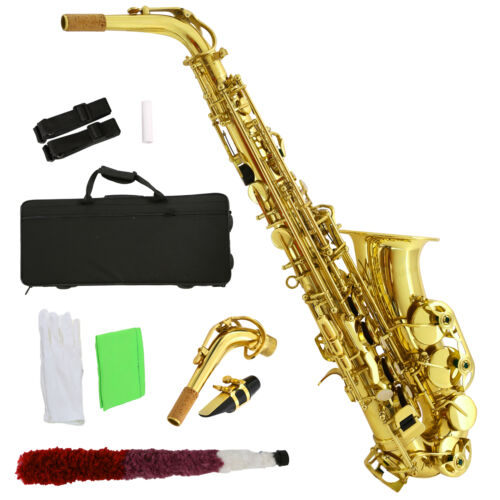 Professional Eb Alto Sax Saxophone School Paint with Case Mouthpiece Carekit