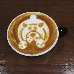 Coffee Shop / Cafe Bundall Gold Coast City Preview