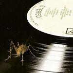 J & K Vintage Vinyl