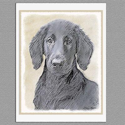 6 Flat-Coated Retriever Dog Blank Art Note Greeting Cards