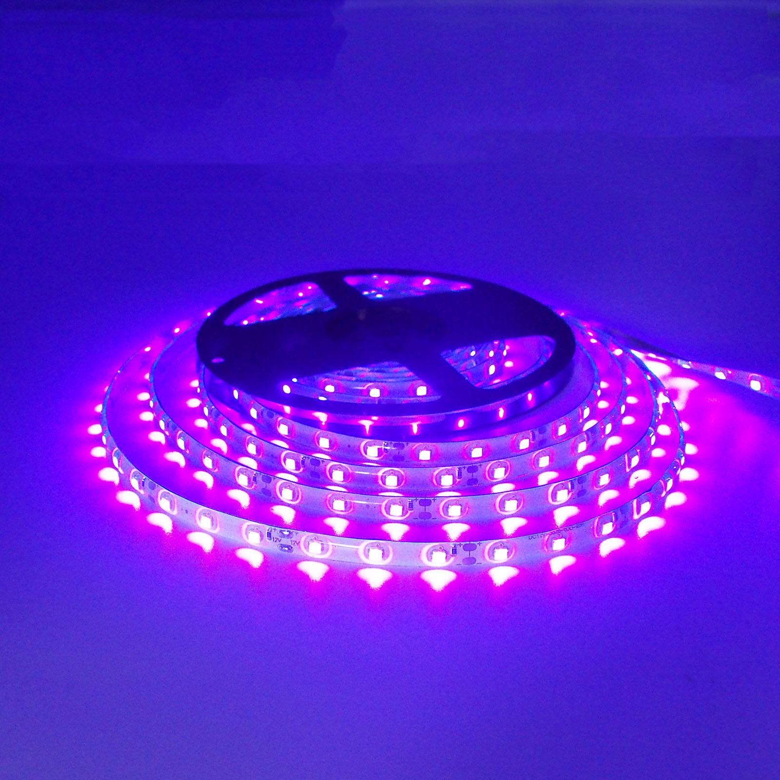 16ft 5M Purple LED Light Waterproof Lighting Strip SMD 3528 300 LEDs Kitchen