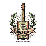 Buzz Box Guitars