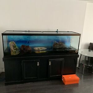 120 gallon fresh water aquarium with ALL ACCESSORIES