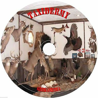 Learn Real Taxidermy Craft DVD Stuff Mount Preserve Fur Tanned Small Animal Art
