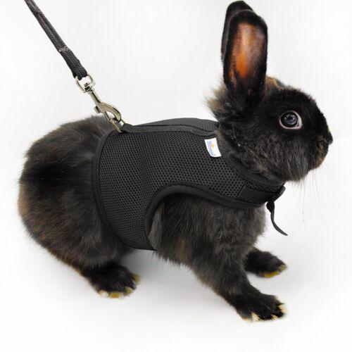 Rabbit harness  Etsy