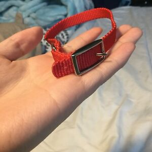 Dog collar (Small)