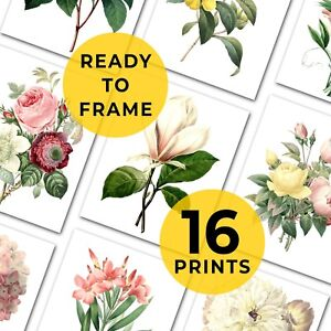 Set Of Botanical Prints, 16 Flower Prints, Gallery Wall, Ready To Frame Art Book