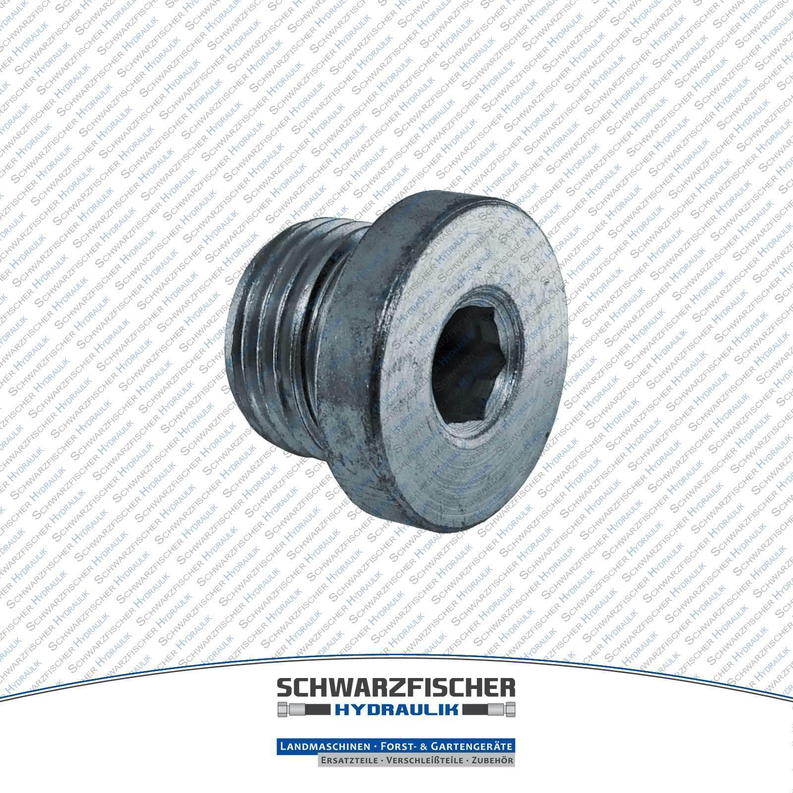 Hydraulik Verschlussschraube VSTI alle Größen metrisch Blindstopfen