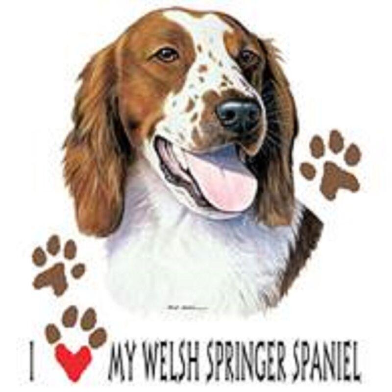 Welsh Springer Spaniel Love Tote
