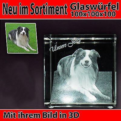 C100 Glas 3D Laser Foto Gravur Geschenkidee 2D in 3D Geburtstag Hund NEU Katze