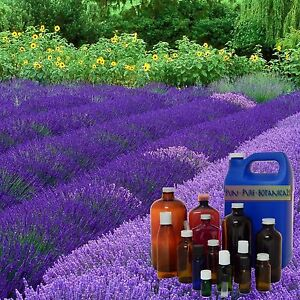 Most Popular Essential Oils Used In Aromatherapy Sizes 3 ml - 1 Gallon