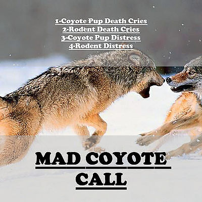 CD GAME CALL, COYOTE HUNTING, COYOTE CALLS, PUP DISTRESS, RODENT DEATH CRIES +++