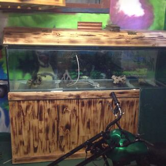 Fish tank 6 foot $290 if gone by Monday  Cairns 4870 Cairns City Preview